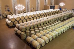 La Gran Ruta del Vino español 1