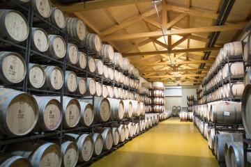 La Gran Ruta del Vino español 4