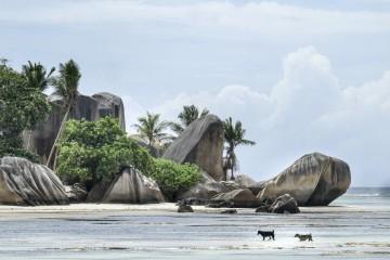 Seychelles, el archipiélago de la felicidad 3