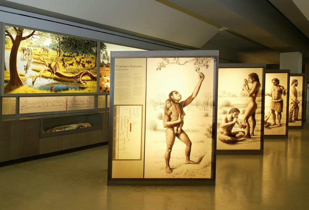 La prehistoria se descubre en España 6