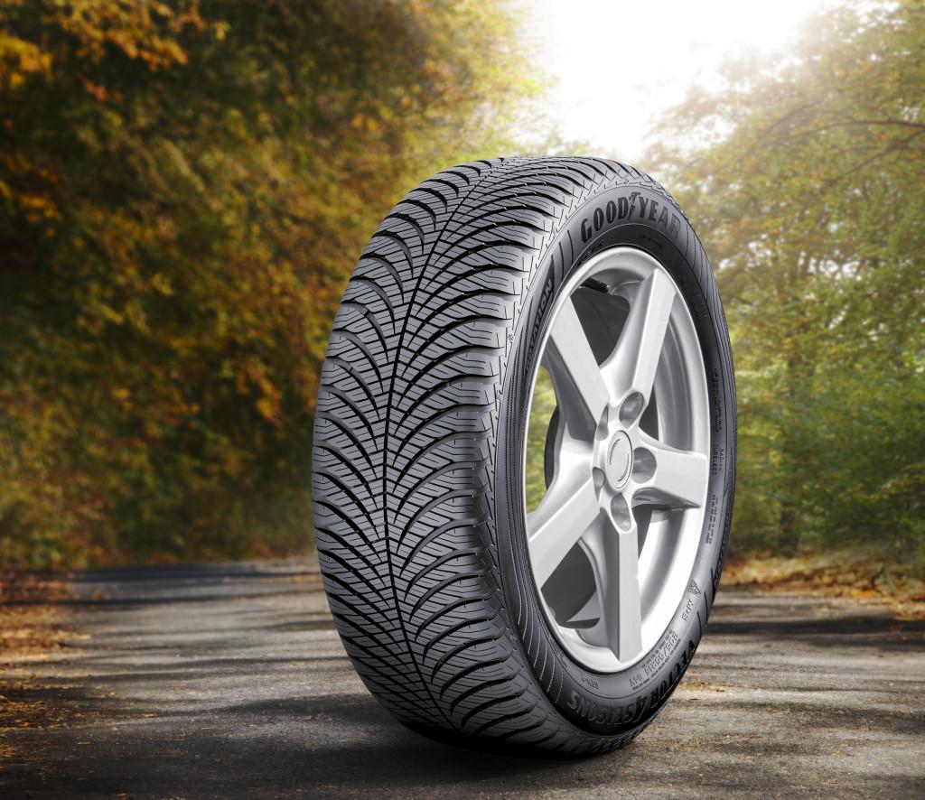 Neumáticos para todo el año