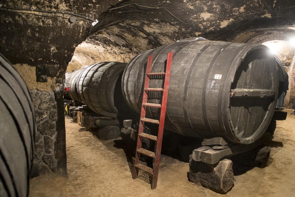 Ruta del Vino de Cigales 1