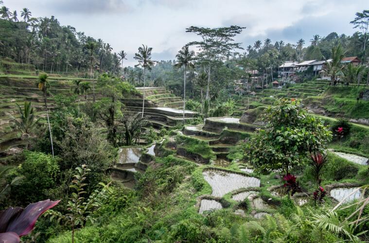 Bali, un mundo de sofisticada espiritualidad 3