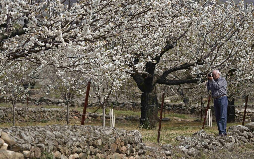 Parques Naturales, refugio en primavera 5