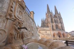 800 años de la Catedral de Burgos 6