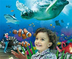 Descuentos en PortAventura y Sea Life Benalmádena