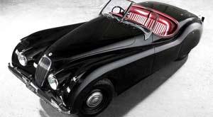 Jaguar, felino inglés