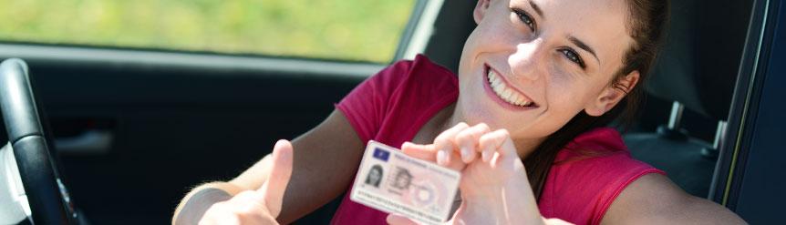 Normas circulación tráfico seguridad novel