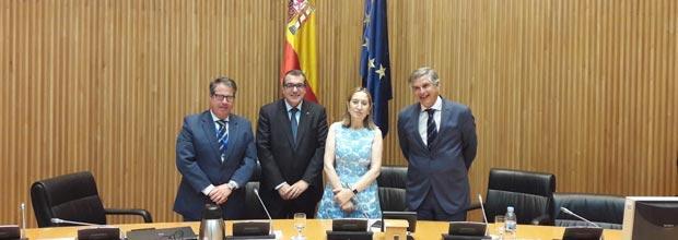 AESVI, Alianza Española para la Seguridad Vial Infantil,