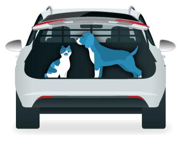 Viajar en coche con mascotas