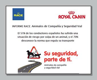 Animales de compañía y seguridad vial