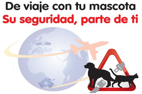 De viaje tu mascota depende de ti